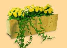 flower-box--01